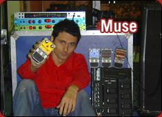 Line 6 Muse Ic