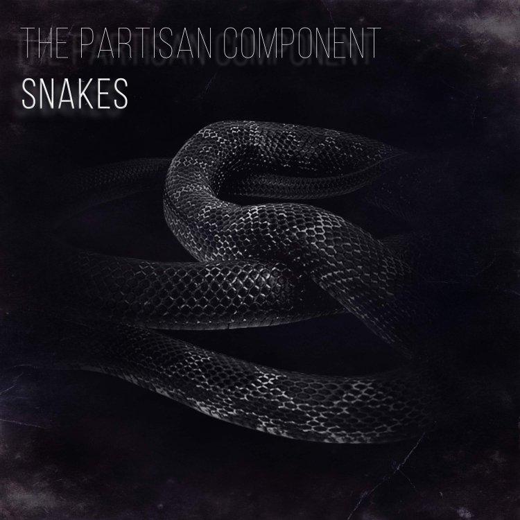 Snakes Cover.jpg