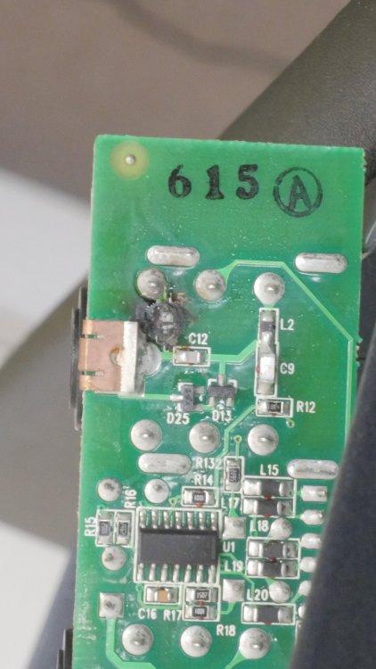 P2740508.JPG
